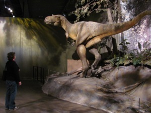 Tyrrell Albertosaurus