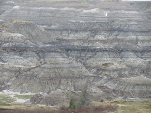 Tyrrell museum area _  Horseshoe Canyon  badlands