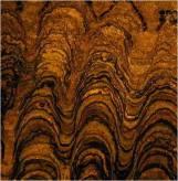 stromatolite proterozoic