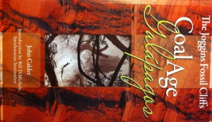 Joggins fossil cliffs by John Calder book cover